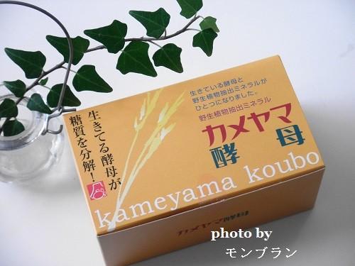 カメヤマ酵母の外箱デザイン