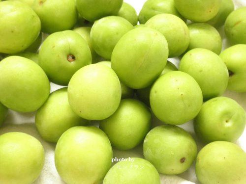 冷凍梅で作る梅シロップレシピ