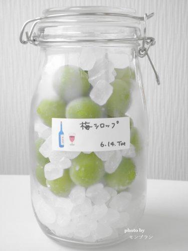 冷凍梅で作る梅シロップ