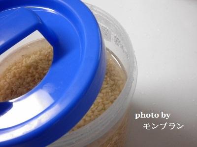 ヨーグルティアで作る発芽玄米