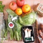 らでぃっしゅぼーや【旬の野菜セット ぱれっと】有機・低農薬のお野菜が自宅に届きます