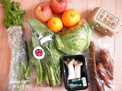 らでぃっしゅぼーや旬の野菜セット ぱれっとの中身