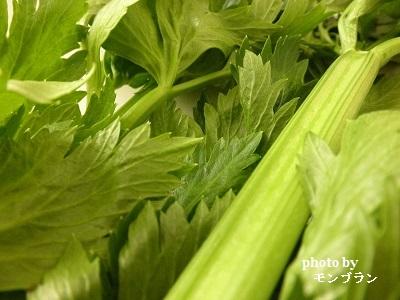 らでぃっしゅぼーや旬の野菜セット ぱれっとのセロリ