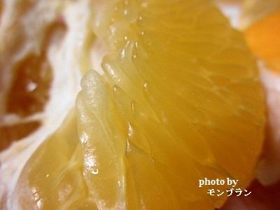 甘くておいしいらでぃっしゅぼーや旬の野菜セット ぱれっとのオレンジ