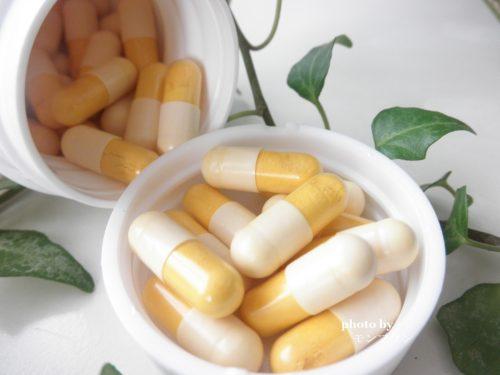 肝臓用サプリメント肝臓の健康にセラクルミン