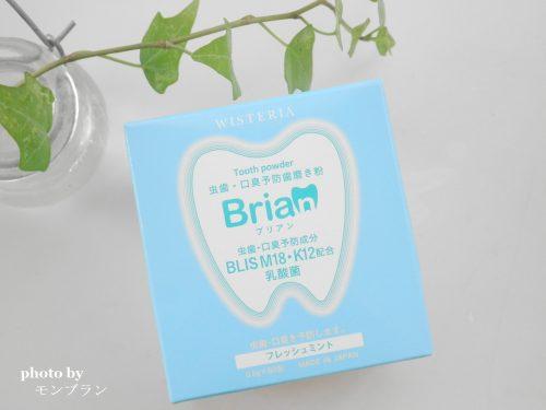 1箱60包入りの虫歯予防乳酸菌配合の歯磨き粉大人ブリアン