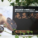 【元気の源】黒にんにくのスティックゼリーは夏バテ・インフルエンザ予防に効果あり!