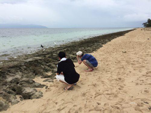 ケアンズ旅行記グリーン島での息子たち