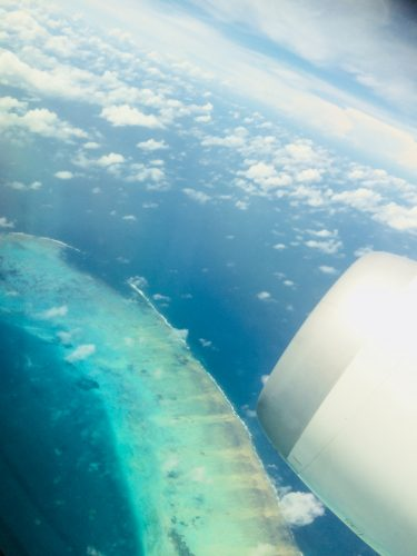 ケアンズ旅行記飛行機からのラグーン