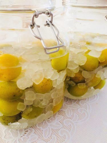 冷凍梅で作る梅酒の作り方