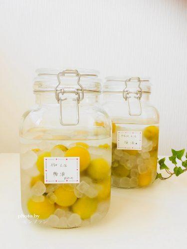 冷凍梅で作る梅酒のレシピ