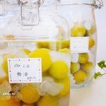 冷凍梅で作る梅酒の作り方(レシピ)