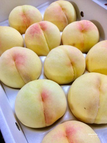 がんばろう岡山清水白桃