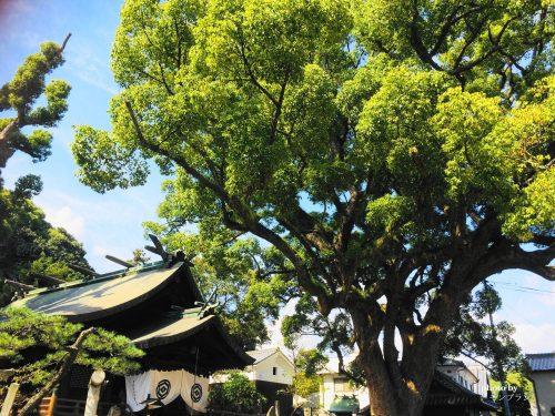 千光寺公園のお寺