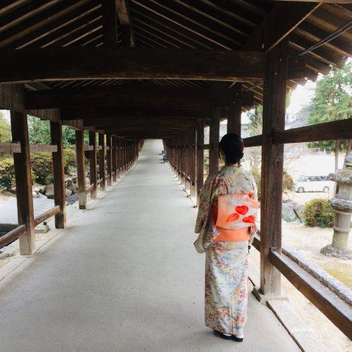 神社の大回廊をお散歩
