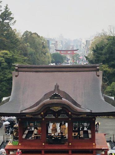 鎌倉八幡宮の景色