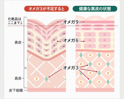 オメガ3脂肪酸が美肌に効果的な理由