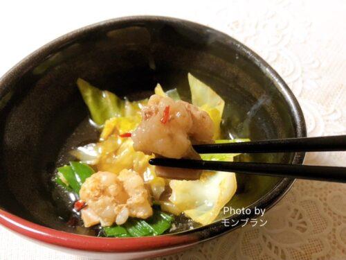 島本博多もつ鍋のお取り寄せ実食レポ