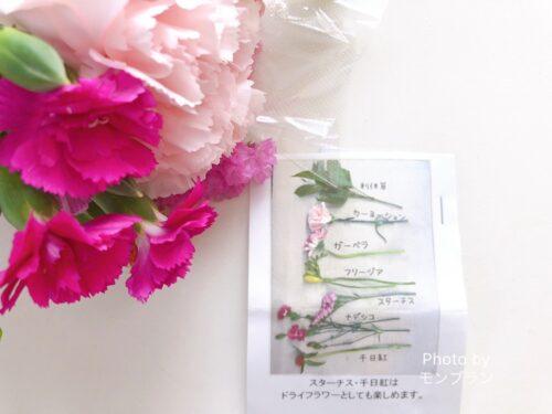 ブルーミー800円プラン今週のお花の内容